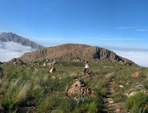 Montagu Mountain Mania – Results