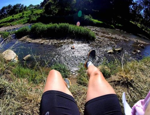 Trail Running in the Urban Jungle – Jozi