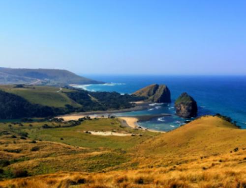 A Wild Coast Adventure